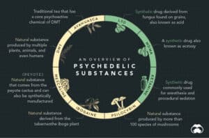 History Of Psychedelics